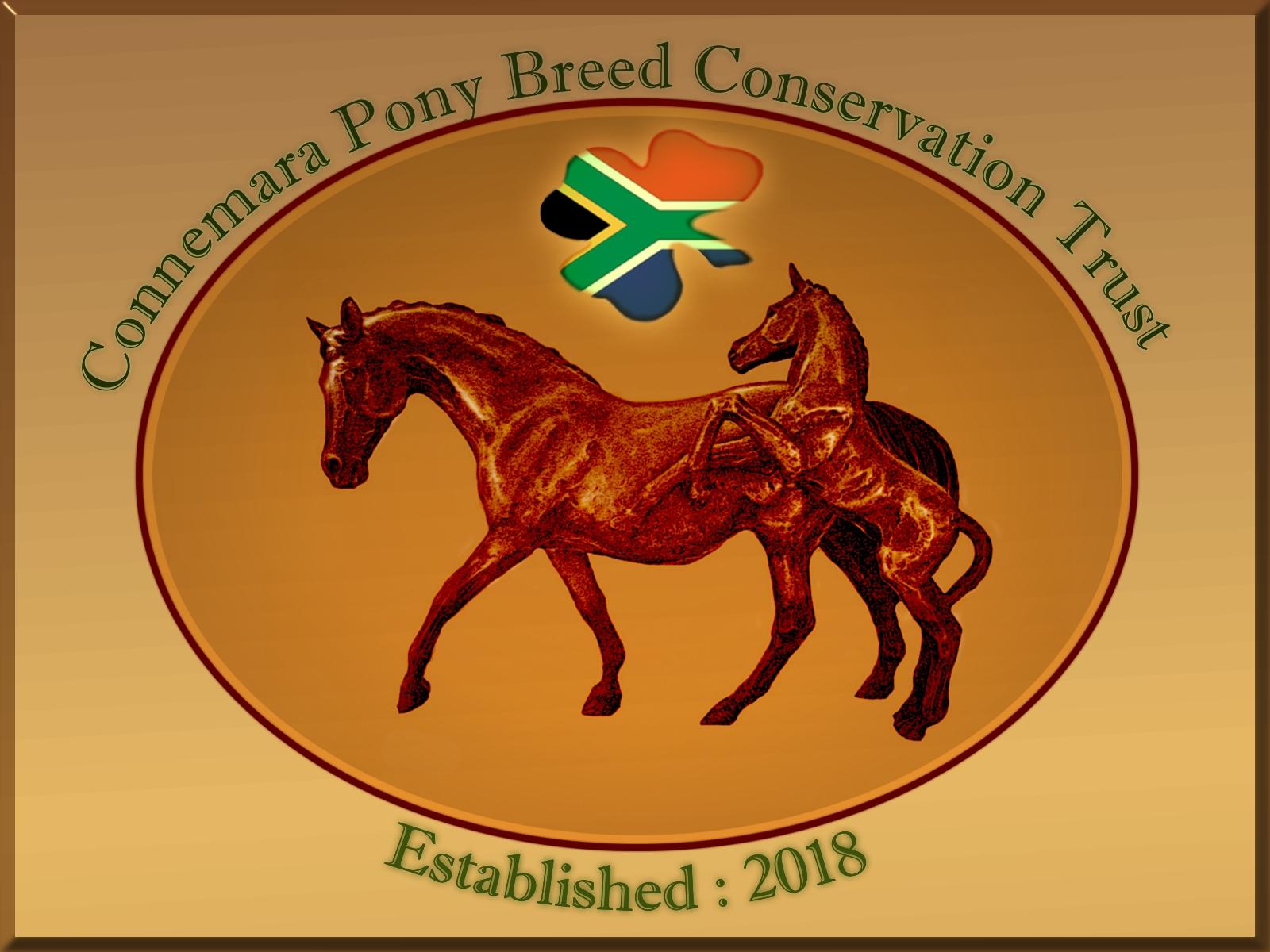Ashgar Connemara Pony Stud