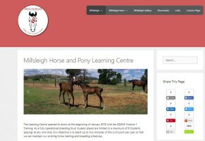 Millsleigh Horse And Pony Website
